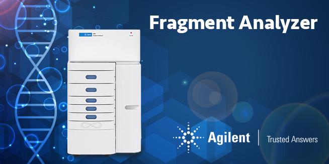 Fragment analyzer